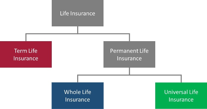 term-life-insurance-vs-whole-life-insurance-vs-universal-life-insurance