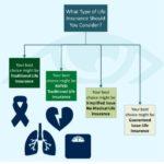 Life insurance infographics